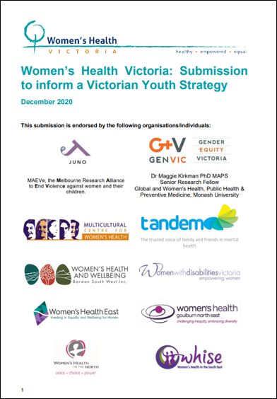 WHV Youth Strategy submission front page with logos of organisations who endorsed the submission
