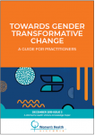 Towards gender transformative change: a guide for practitioners cover  image
